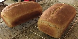 Two loaves of rye bread on a metal cooling rack